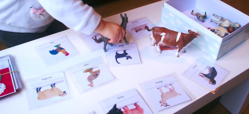 Association des cartes et des animaux en plastique