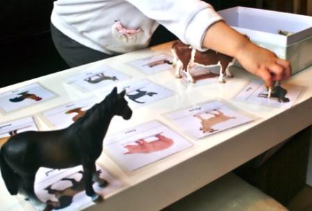 Association des cartes et des animaux de la ferme