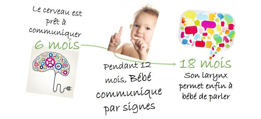 Les différentes étapes pour signer avec son bébé