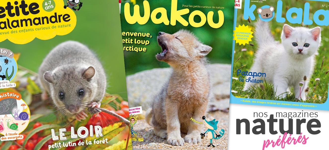 Magazines nature : Kolala, Wakou, La petite salamandre
