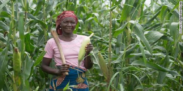 Young Farmers Empowerment