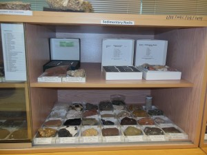 Various rock samples from WARDS Collection at Curtin University Sarawak