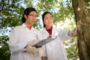The best bioscience programmes at Taylor's Unviersity