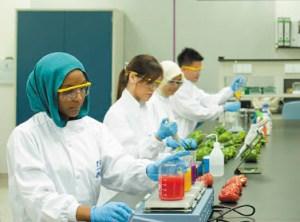 UK Top Ranked Biotechnology Degree at the University of Nottingham Malaysia