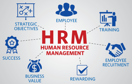 Best Human Resource Management (HRM) Degree Courses in Malaysia