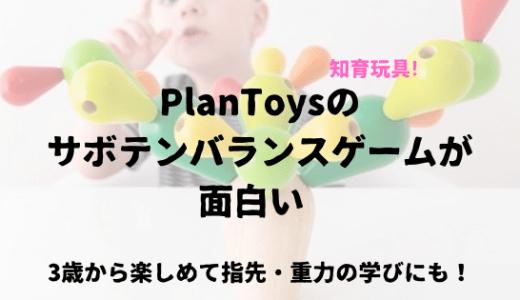 PlanToysのサボテンバランスゲームが面白い 3歳から楽しめて指先・重力の学びにも!