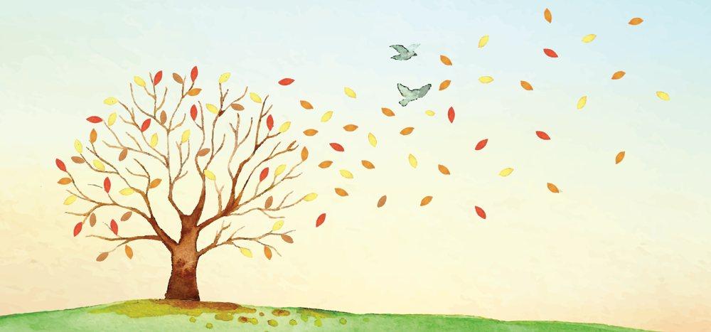 Koncert jesienny – scenariusz uroczystości