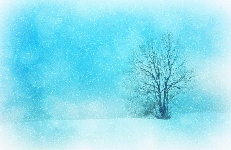 Biało... Agata Dziechciarczyk Dzień Koloru Białego Wierszyki Zima (Wierszyki)