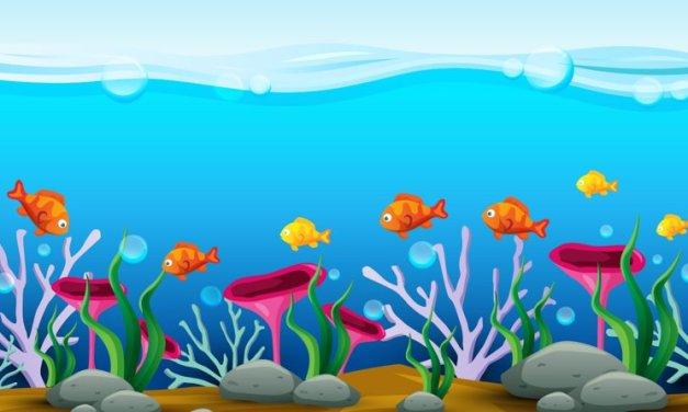 Wierszyk na Dzień Ryby