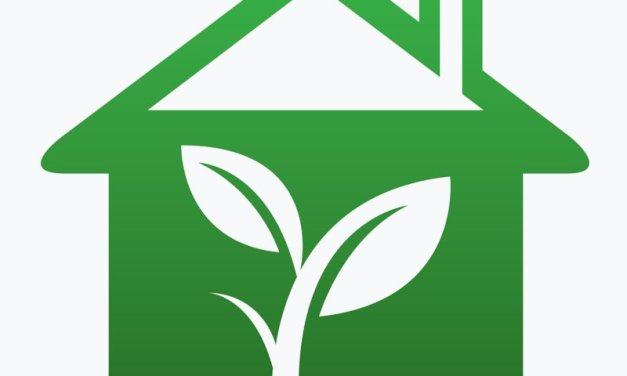 Ekologiczny dom
