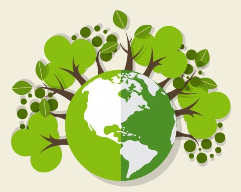 Ekologia Agata Dziechciarczyk Ekologiczne (Wierszyki) Światowy Dzień Dzikiej Przyrody Wierszyki