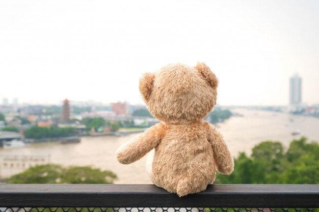 25 listopada - Dzień Pluszowego Misia Agata Dziechciarczyk Dzień Niedźwiedzia Dzień Pluszowego Misia Okolicznościowe Wierszyki