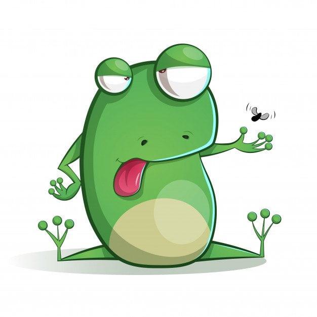 Zagadki na łące - żaba Agata Dziechciarczyk Wierszyki Zagadki