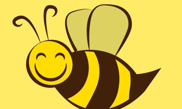 Zagadki na łące – Pszczółka