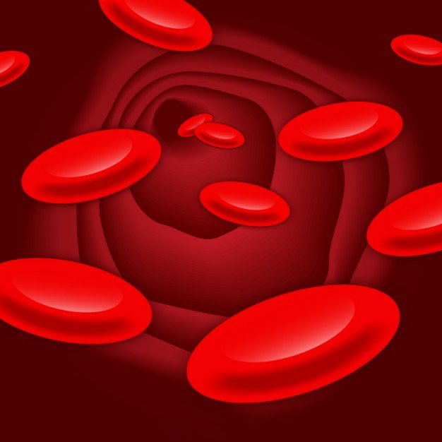 Życiodajna krwinka Agata Dziechciarczyk Wierszyki Zagadki (Wierszyki) Zdrowie (Wierszyki)