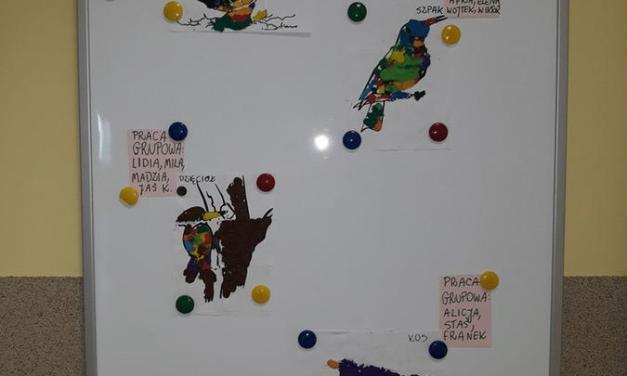 Rozpoznawanie ptaków oraz dźwięków jakie wydają