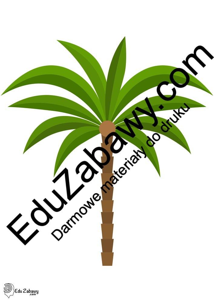 Dekoracje: palmy (10 szablonów) Dekoracje Dekoracje (Pożegnanie przedszkola) Dekoracje (Zakończenie roku)