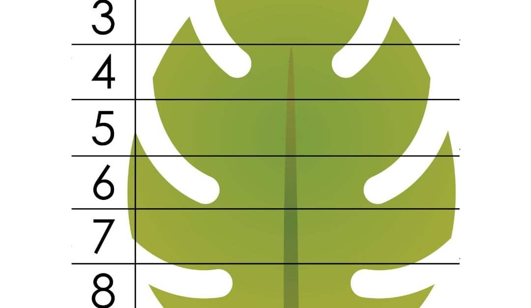 Jesień: Puzzle 10 elementów (8 kart pracy)