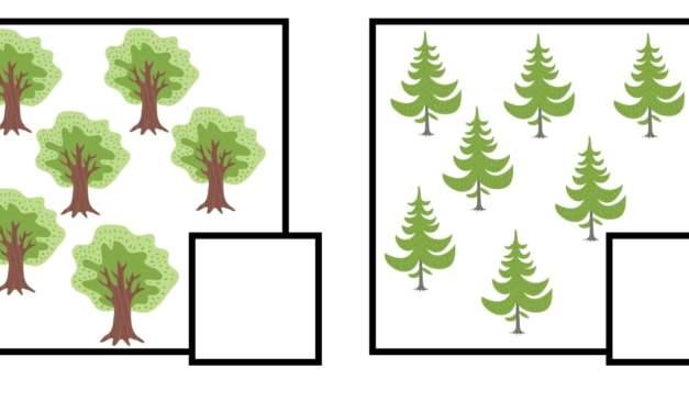 Dzień Drzewa: Policz obrazki (10 kart pracy)