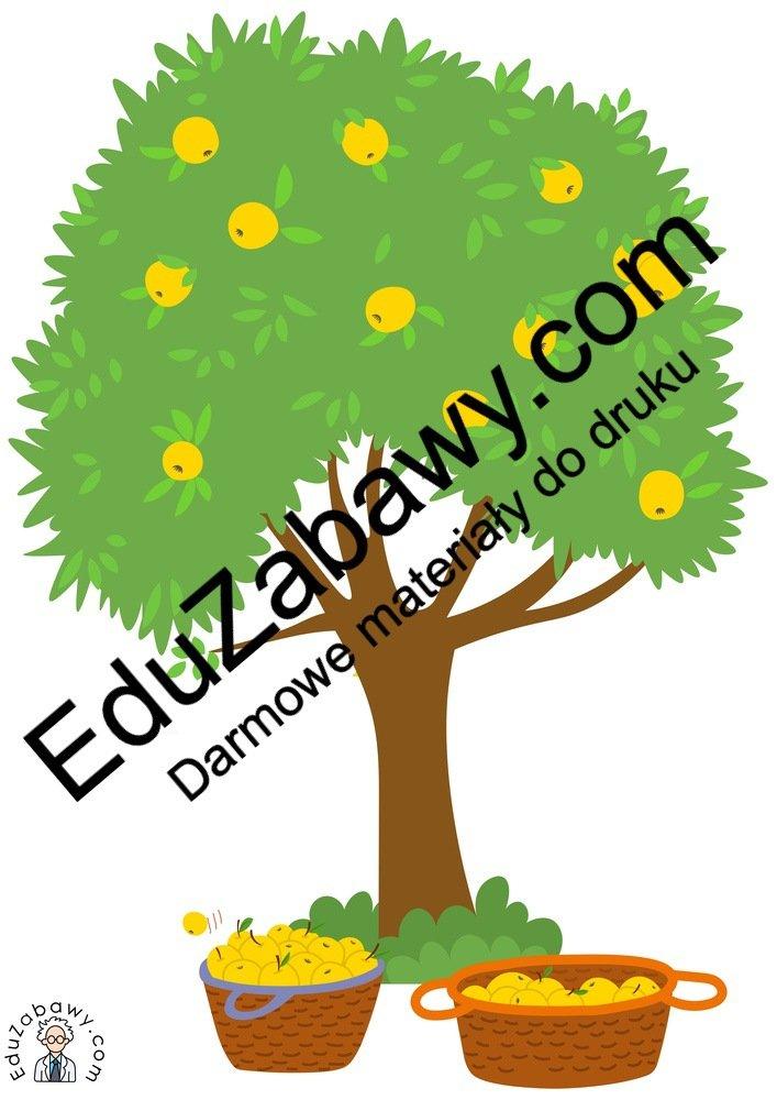 Dekoracje: Drzewa owocowe (6 szablonów) Dekoracje Dekoracje (Dzień Drzewa) Dekoracje (Jesień) Międzynarodowy Dzień Ptaków