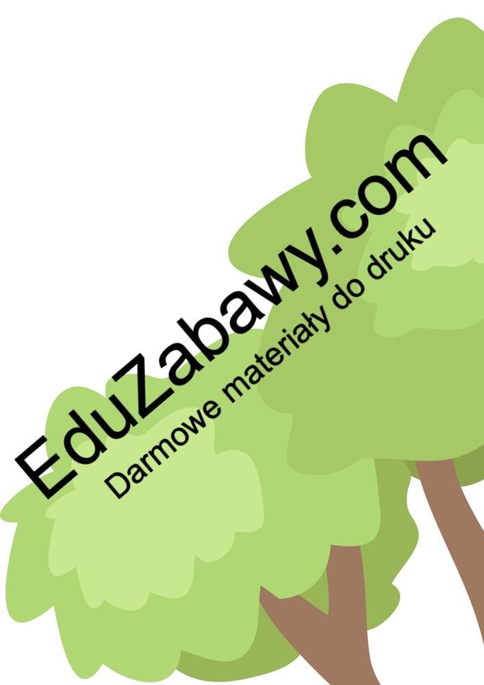 Dekoracje: Drzewa jesienne XXL (10 szablonów) Dekoracje Dekoracje (Dzień Drzewa) Dekoracje (Dzień Jeża) Dekoracje (Jesień) Międzynarodowy Dzień Ptaków