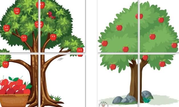 Dekoracje: Drzewa owocowe XXL (6 szablonów)