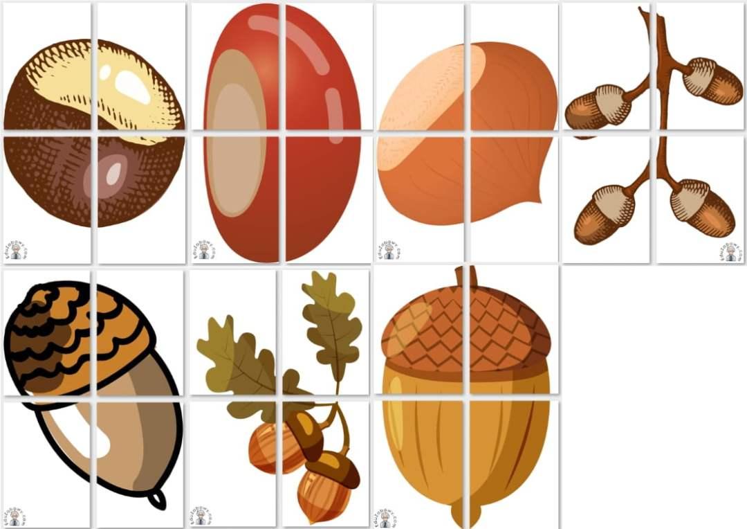 Dekoracje XXL: Kasztany i żołędzie (7 szablonów) Dekoracje Dekoracje (Dzień Drzewa) Dekoracje (Jesień)