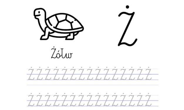 Pisanie po śladzie w liniaturze: Litera Ż (3 karty pracy)