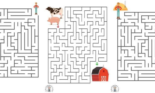Labirynty na wsi (10 kart pracy)