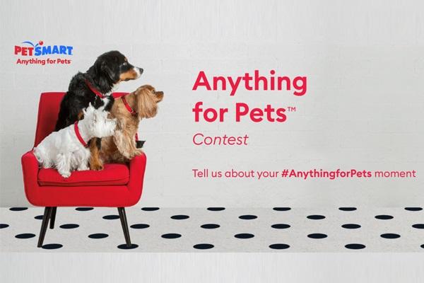 PetSmart Photo Contest