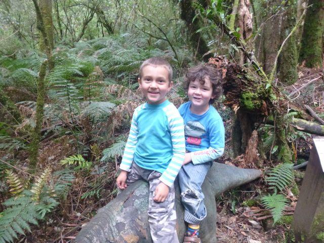Joash & Elijah