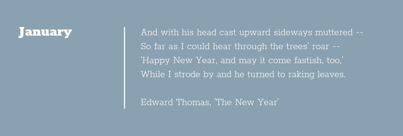 Poem Extract 'The New Year by Edward Thomas