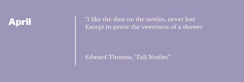 Edward Thomas - Tall Nettles Poem Extract April