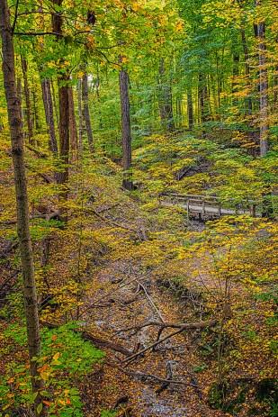 Trail Bridge in Late October