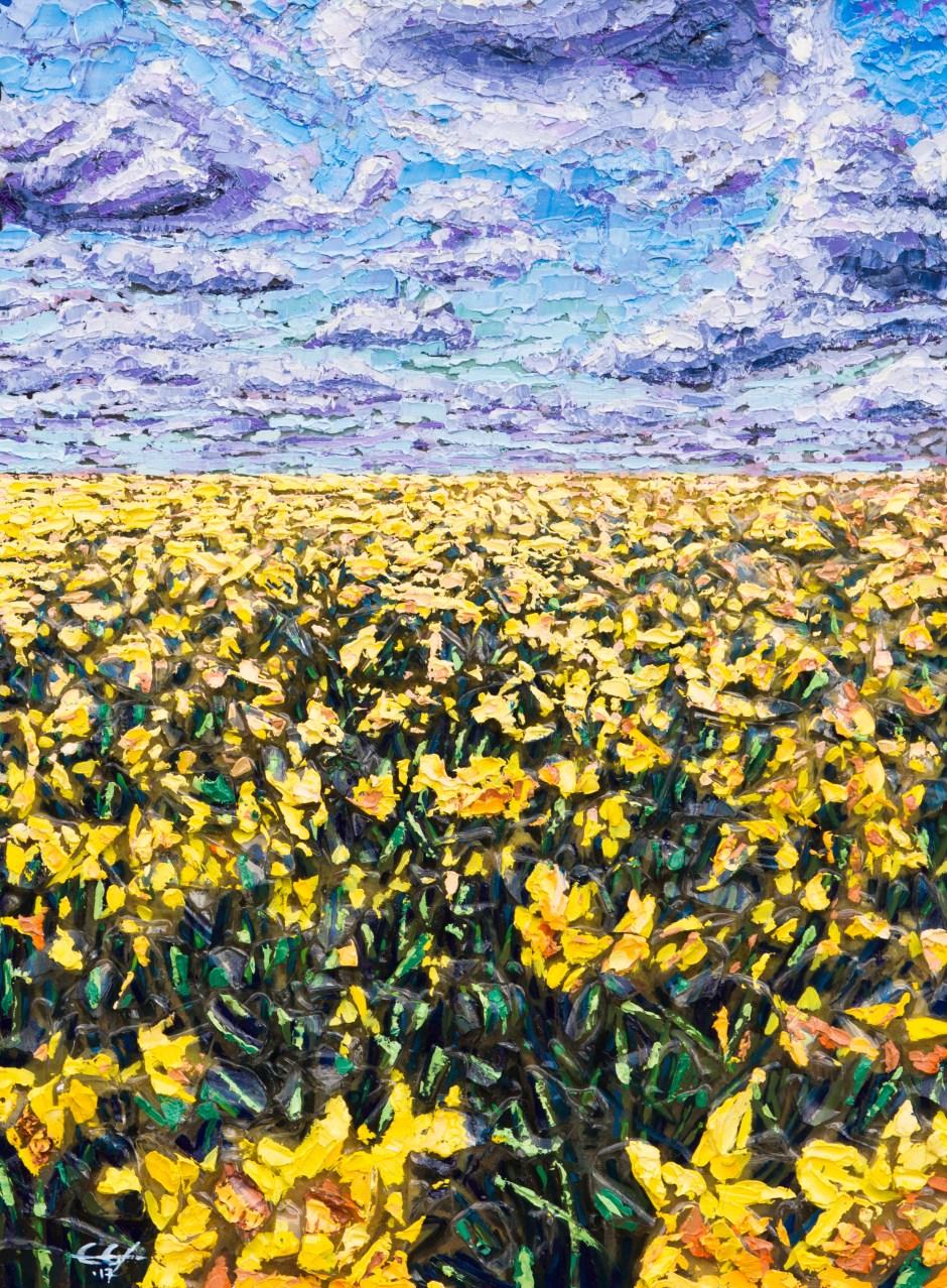 Daffodils & Clouds (2017)