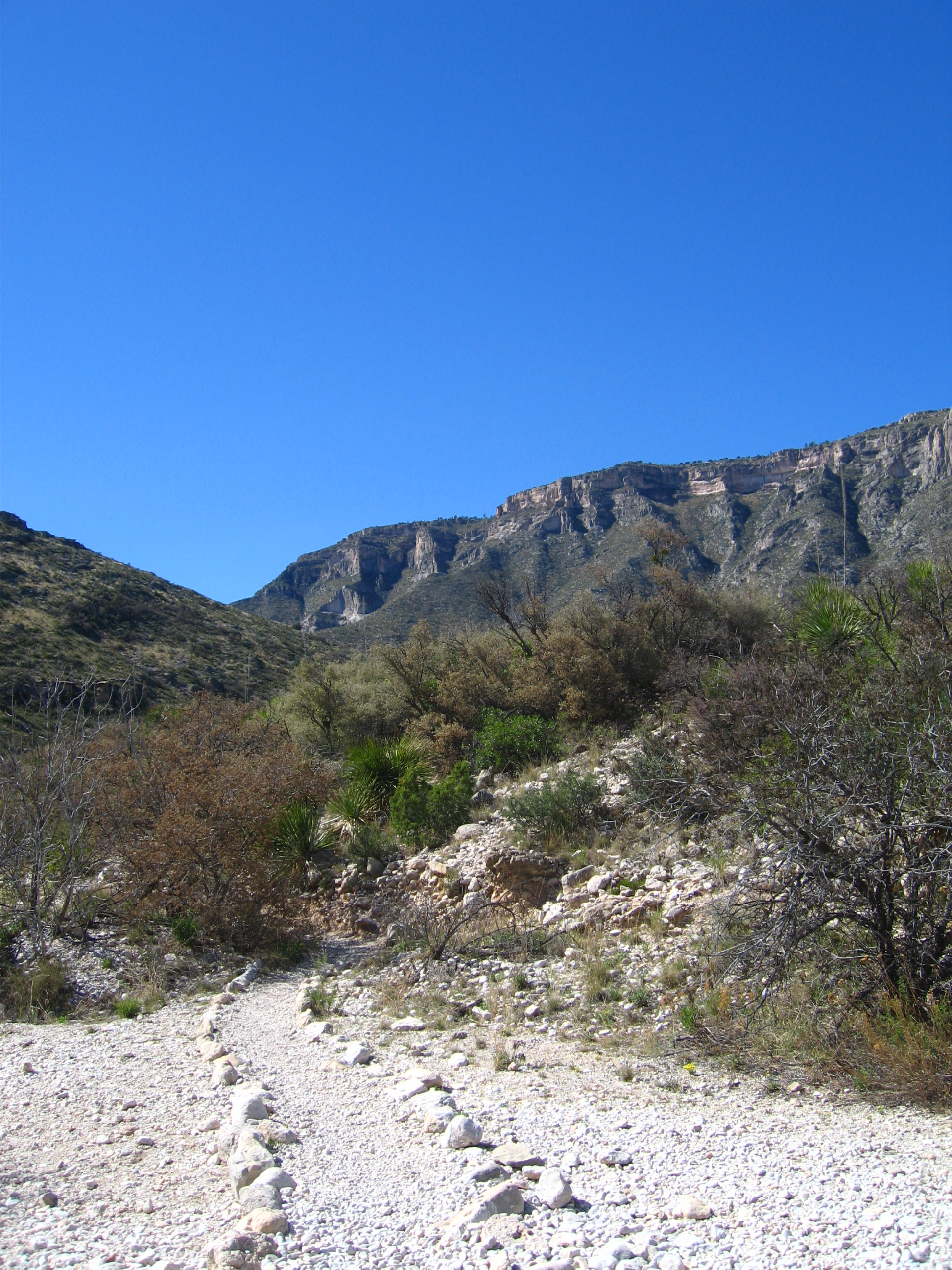 Guadalupe Mountains National Park, New Mexico