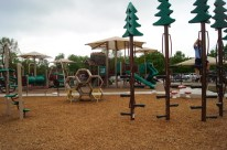Ground image of the climbing tree and climbing honey comb structure on the boundless playground.