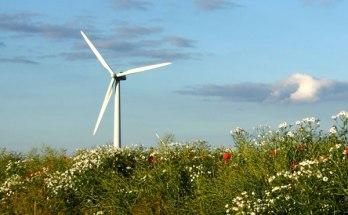 Испанская компания хочет построить первую в Астраханской области ветровую электростанцию
