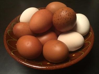 eiereninschaal