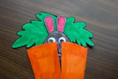 Carrot_35