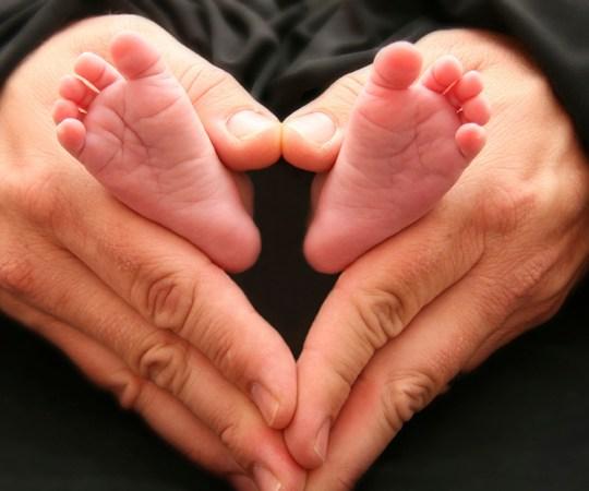 Soomes tekitab elevust kooliõpik, milles on öeldud, et ka mehed võivad sünnitada