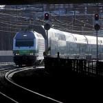 Helsingis kargas koer raudteele, rong oli sunnitud pidurdama