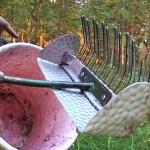 Taimaalt marjakorjajaid sel aastal Soome ei tule – kes korjab ära metsamarjad?