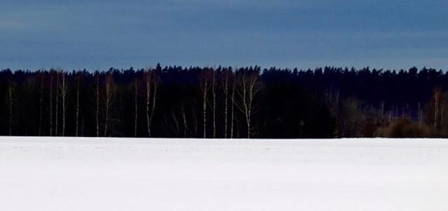 ARVAMUS: Eestile tegi karuteene valitsuse vahetus