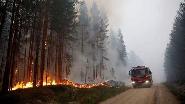 Rootsi metsatulekahjud üha suurenevad, põleb 20 000 hektarit metsa