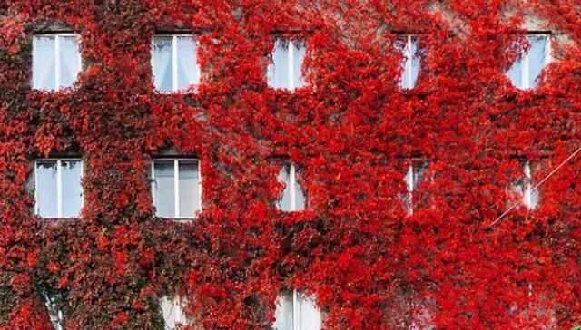 Soomes saab 39-ruutmeetrise korteri kätte 6500 euroga