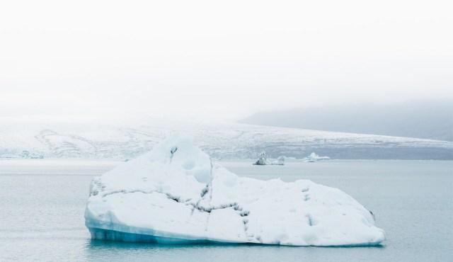 Sahinad: Donald Trump tahab osta Gröönimaa
