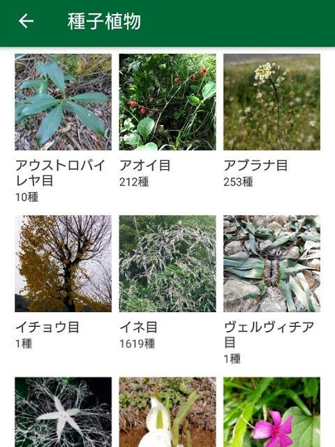 花 の 名前 を 教え て くれる アプリ