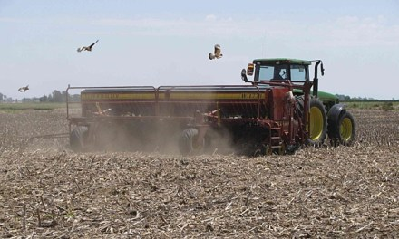 The soybean harvest entered its final section and it remains to collect only 470,000 hectares
