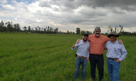 The DLF's goal: to be between the first three forage seed suppliers in Latam